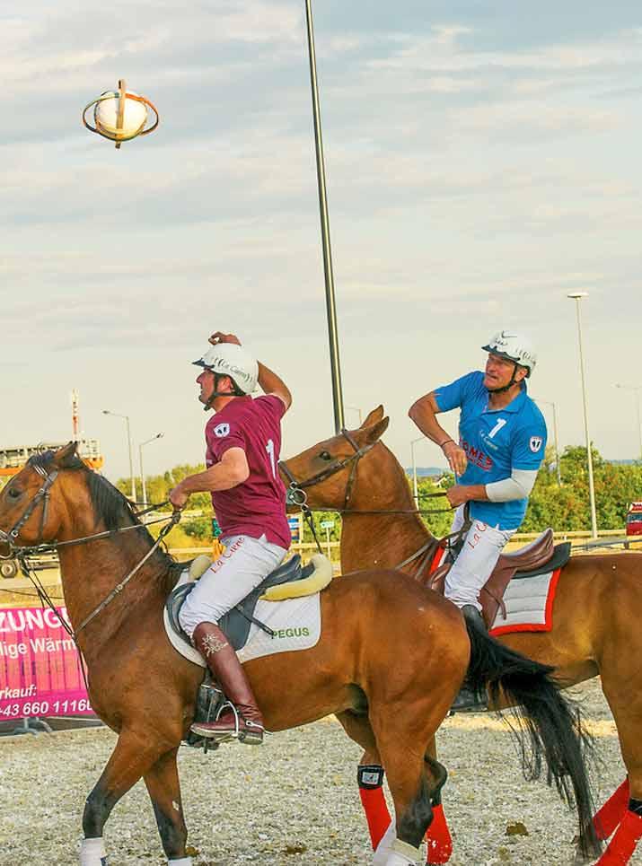 Spielregeln des neuen Pferde-Ballsports
