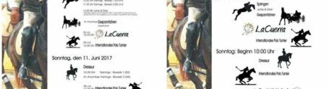 Markersdorfer Pferdetage 10. – 11. Juni 2017